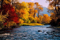 Tim Doolin--Tongue River Autumn--wild scenic