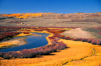 Green River valley with vibrant orange dead grass.jpg